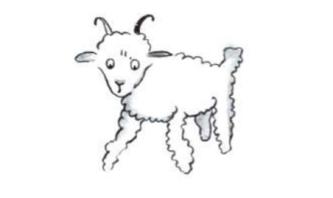 Mouton a corne